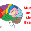 music and the brain thumbnail